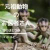 【ドリトル先生】祝・映画化!100年前に書かれた児童小説の名作。動物と話せるドク