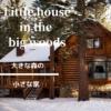 【大きな森の小さな家】開拓時代の少女の物語。テレビドラマにもなった児童文学の不朽