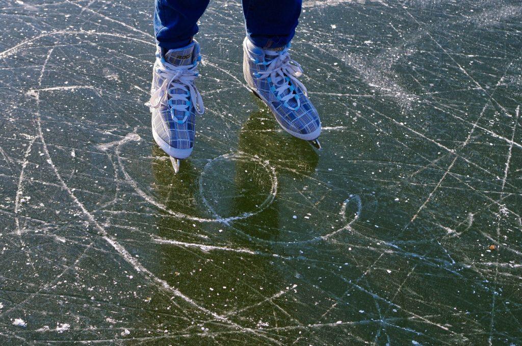 スケートにいこうよ リン・ベリー/文 なかたひろえ/絵 ほるぷ出版