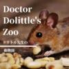 【ドリトル先生】祝映画化!百年前の動物ファンタジー。ドクター・ドリトルの不思議な