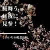 【くのいち小桜忍法帖】キュートなくのいち忍法帖!新感覚時代劇児童文学、見参!【小