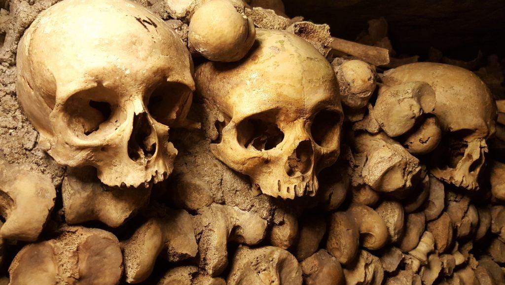 サーティーナイン・クルーズ 1 骨の迷宮  リック・リオーダン/著 小浜杳/訳 メディアファクトリー