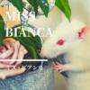 【ミス・ビアンカ】美しき白ねずみの大冒険! イギリスからやってきた名作児童小説【