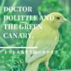 【ドリトル先生】100年前の動物ファンタジー! 動物と会話できる獣医さんと緑のカナ