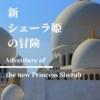 【新シェーラ姫の冒険】世界を救え!双子のお姫様の大冒険。日本発アラビアンナイト・