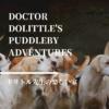 【ドリトル先生】100年前の動物ファンタジー、最終巻。トミーがつづる、ドリトル先生