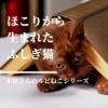 【本屋さんのルビねこ】ほこりから生まれた不思議な子猫ルビと、本屋さんのハートフル